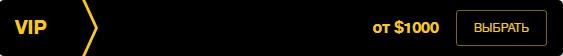 vip-schet